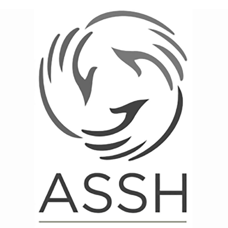 ASSH-Logo square