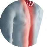 Tendon Spine Pain
