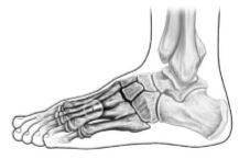 foot (6)