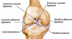 knee arthroscopy illustration