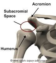 Subacromial Space Shoulder Diagram